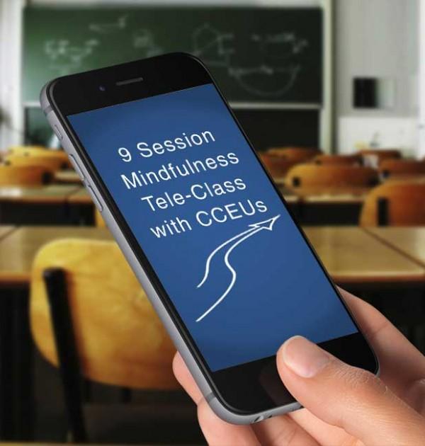 9-session-CCEUs